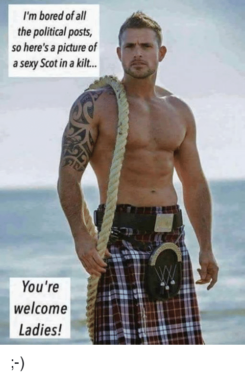 im bored of all the political posts so heres a 15061829 ✅ 25 best memes about kilt kilt memes