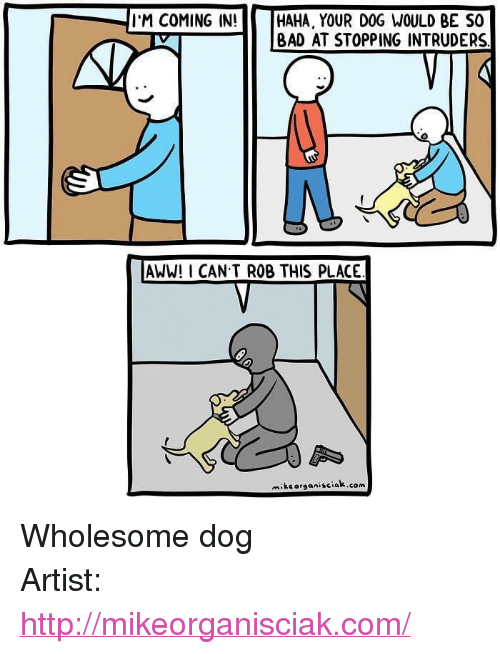 """Aww, Bad, and Http: I'M COMING IN!  HAHA, YOUR DOG WOULD BE SO    BAD AT STOPPING INTRUDERS  AWW! I CAN T ROB THIS PLACE  miksorganisciak.com <p>Wholesome dog</p>  Artist: <a href=""""http://mikeorganisciak.com/"""">http://mikeorganisciak.com/</a>"""