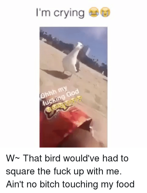 Birds fucking in the air congratulate, seems