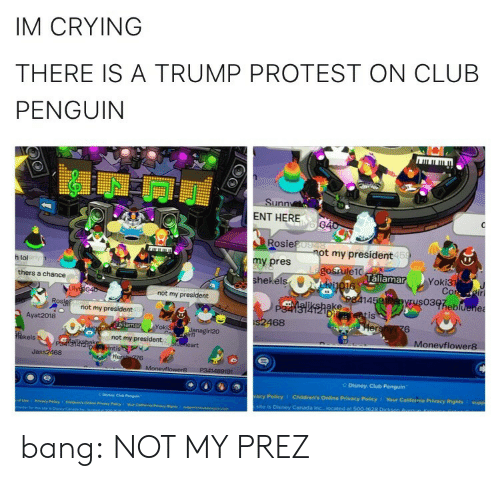 Club, Crying, and Disney: IM CRYING  THERE IS A TRUMP PROTEST ON CLUB  PENGUIN  Sunn  ENT HERE  Rosie  my pres  hekéls  t my president  15  h lol  laliamar  Yoki3  thers a chance  not my president  14  03heb  ake  Di  not my president  is  Ayat 2018  468  6  oki3  Monevflower8  kels  not my president  Jass2468  Disney Club Penguin  acy Policy  Children's Online Privacy Policy 1 Your California Privacy Rights I supp  site is Disney Caneda bang:  NOT MY PREZ