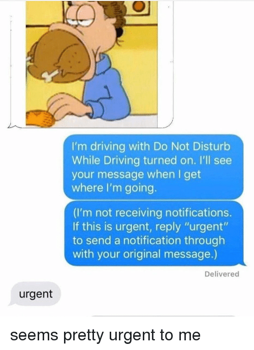 """Driving, Tumblr, and Reply: I'm driving with Do Not Disturb  While Driving turned on. I'll see  your message when I get  where I'm going.  (I'm not receiving notifications.  If this is urgent, reply """"urgent""""  to send a notification through  with your original message.)  Delivered  urgent seems pretty urgent to me"""