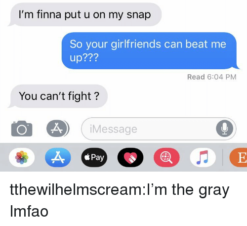 Target, Tumblr, and Blog: I'm finna put u on my snap  So your girlfriends can beat me  up???  Read 6:04 PM  You can't fight?  Message  á Pay tthewilhelmscream:I'm the gray lmfao