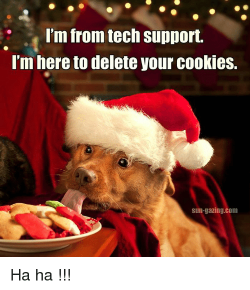 dog tech support. cookies, memes, and tech support: i\u0027m from support. i dog support o