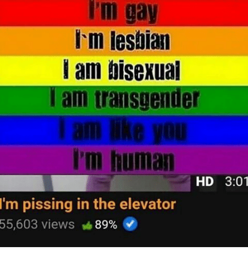 Am i bi sexual or gay