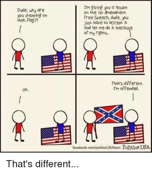 Dude, Facebook, and Politics: Im giving you a lesson  on the ist Amendment,  Free Speech, dude, you  just have to accept  and let me do it because  of my ights  Dude, why are  you stepping on  ha flag ?  Thats different.  I'm offended.  oh..  facebook.com/politicsUSAtoon Politics USA That's different...