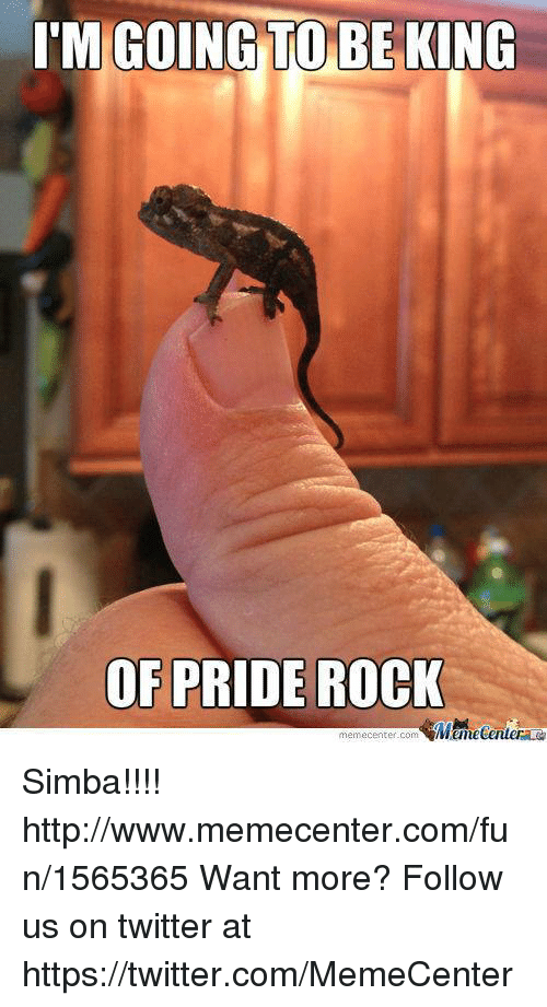 Memes, 🤖, And King: IM GOING TO BE KING OF PRIDE ROCK Memecenter