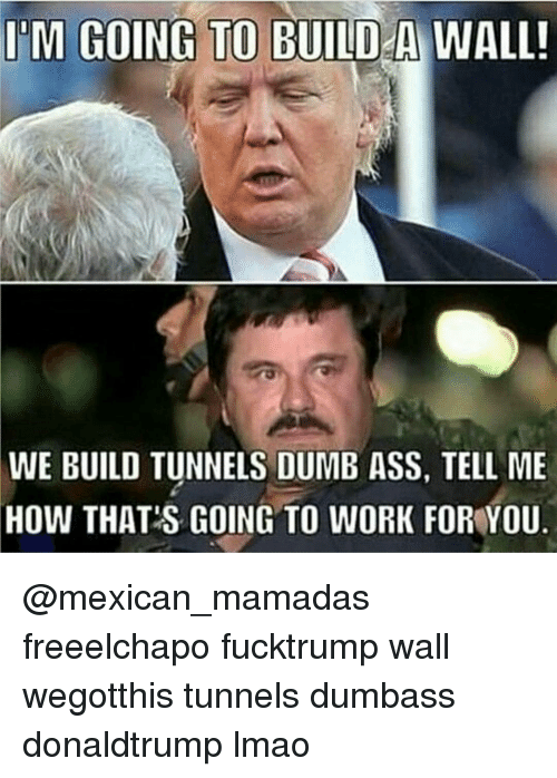 im going to build a wall we build tunnels dumb 12685033 ✅ 25 best memes about mamadas mamadas memes