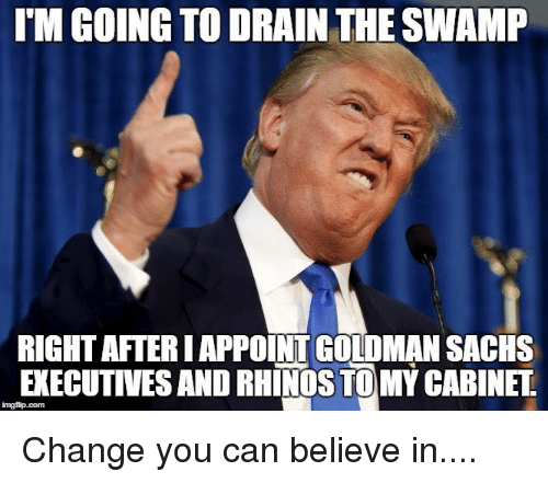 IM GOING TO DRAIN THE SWAMP RIGHT AFTERIAPPOINT GOLDMAN SACHs ...