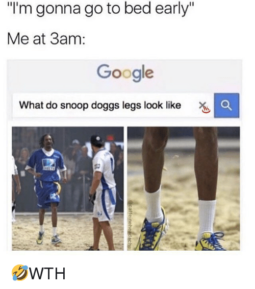 "Google, Memes, and Snoop: I'm gonna go to bed early""  Me at 3am:  Google  What do snoop doggs legs look like 🤣WTH"