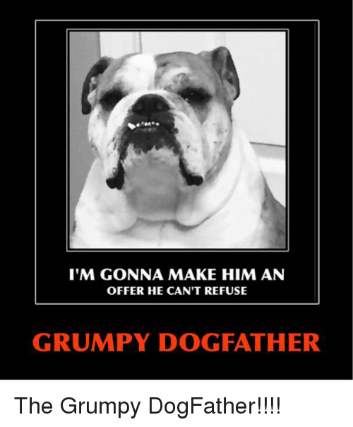 Im Gonna Make Him An Offer He Cant Refuse Grumpy Dog Father The