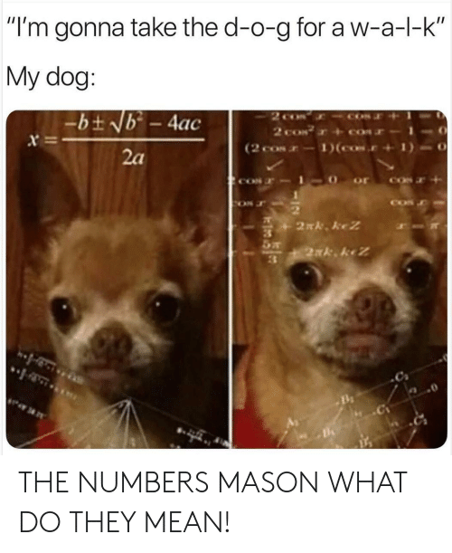 "Mean, Dog, and Mason: ""I'm gonna take the d-o-g for a w-a-l-k  My dog:  2 co  2 coN  (2 cos-1)(cos.  -bt Nb - 4ac  x  2a  2N. keZ  2xk keZ THE NUMBERS MASON WHAT DO THEY MEAN!"