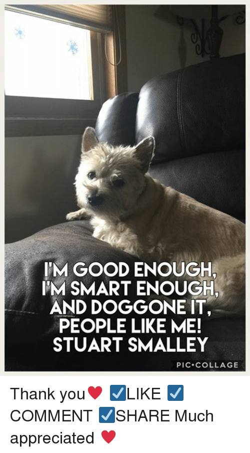 Memes, Thank You, and Collage: IM GOOD ENOUGH  IM SMART ENOUGH  AND DOGGONE IT  PEOPLE LIKE ME!  STUART SMALLEY  PIC.COLLAGE Thank you♥️ ☑️LIKE ☑️COMMENT ☑️SHARE Much appreciated ♥️