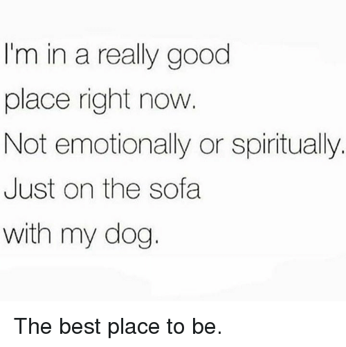 Dank, Best, and Good: I'm in a really good  place right now  Not emotionally or spiritually.  Just on the sofa  with my dog. The best place to be.