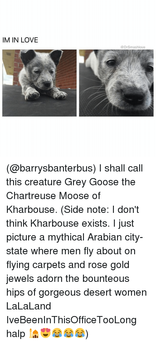Memes, 🤖, and Gold: IM IN LOVE  Dr Smashlove (@barrysbanterbus) I shall call this creature Grey Goose the Chartreuse Moose of Kharbouse. (Side note: I don't think Kharbouse exists. I just picture a mythical Arabian city-state where men fly about on flying carpets and rose gold jewels adorn the bounteous hips of gorgeous desert women LaLaLand IveBeenInThisOfficeTooLong halp 🕌😍😂😂😂)