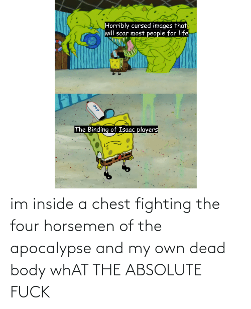 Apocalypse, Fighting, and Own: im inside a chest fighting the four horsemen of the apocalypse and my own dead body whAT THE ABSOLUTE FUCK