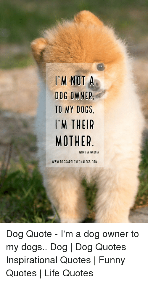 I'M NOT a DOG OWNER TO MY DOGS I'M THEIR MOTHER JENNIFER WAGNER