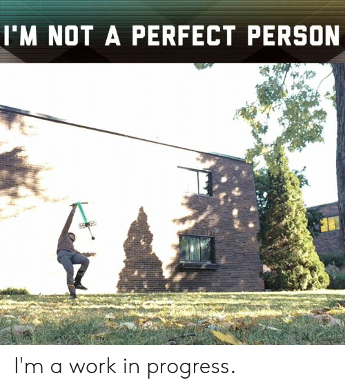 Memes, Work, and 🤖: I'M NOT A PERFECT PERSON I'm a work in progress.