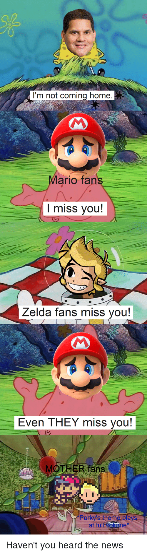 Im Not Coming Home Mario Fans I Miss You Zelda Fans Miss You Even