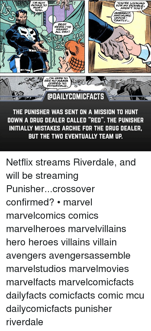 """Drug Dealer, Memes, and Netflix: I'M NOT  GOING TO  HURT  YOU'RE LOOKING  AREN'T You  FOR MY DOUBLE  CORRECT  ANDMORE  IMPOR  TANTLY.  BEST  NEWS I'VE  EARO,  ALL DAY!  .I'M HERE TO  SEE NO HARM  COME TO  RIVERGALE  @DAILYCOMICFACTS  THE PUNISHER WAS SENT ON A MISSION TO HUNT  DOWN A DRUG DEALER CALLED """"RED"""". THE PUNISHER  INITIALLY MISTAKES ARCHIE FOR THE DRUG DEALER,  BUT THE TWO EVENTUALLY TEAM UP. Netflix streams Riverdale, and will be streaming Punisher...crossover confirmed? • marvel marvelcomics comics marvelheroes marvelvillains hero heroes villains villain avengers avengersassemble marvelstudios marvelmovies marvelfacts marvelcomicfacts dailyfacts comicfacts comic mcu dailycomicfacts punisher riverdale"""