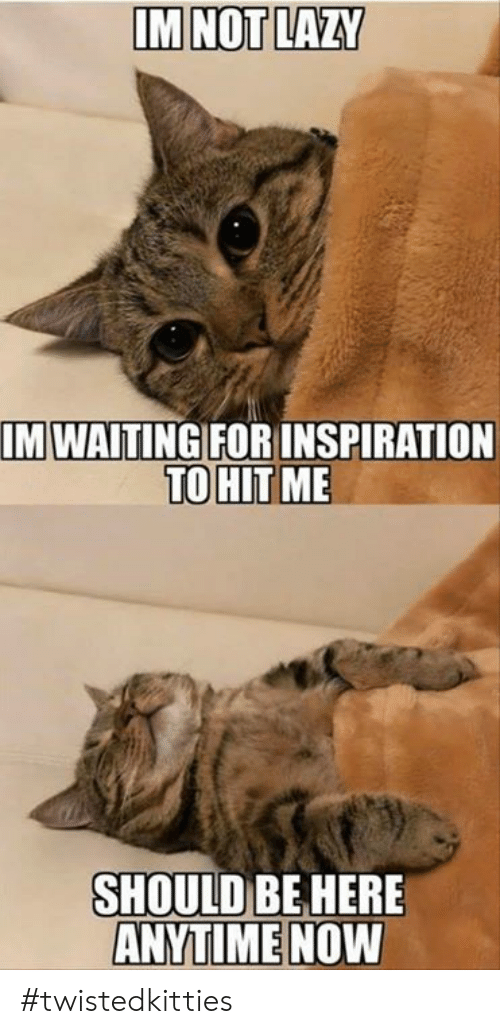 Lazy, Memes, and Waiting...: IM NOT LAZY  M WAITING FORINSPIRATION  TO HIT  ME  SHOULD BEHERE  ANYTIME NOW #twistedkitties