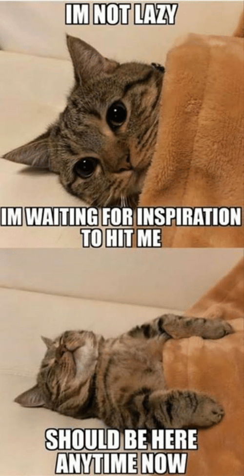 Lazy, Memes, and Inspiration: IM NOT LAZY  MWAİTINGFOR INSPIRATION  SHOULD BE HERE  ANYTIME NOW