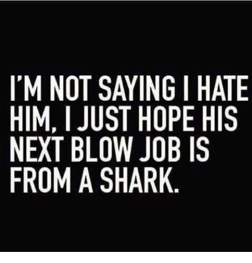acirc best memes about hammerhead shark hammerhead shark memes memes shark and blow job i m not saying i hate him i just hope his next blow job is from a shark