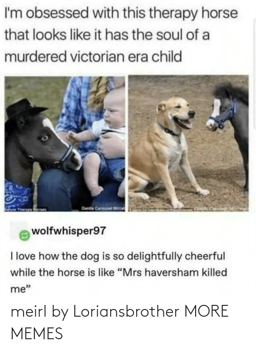 """Dank, Love, and Memes: I'm obsessed with this therapy horse  that looks like it has the soul of a  murdered victorian era child  Gende Carousal Minia  wolfwhisper97  I love how the dog is so delightfully cheerful  while the horse is like """"Mrs haversham killed  me"""" meirl by Loriansbrother MORE MEMES"""