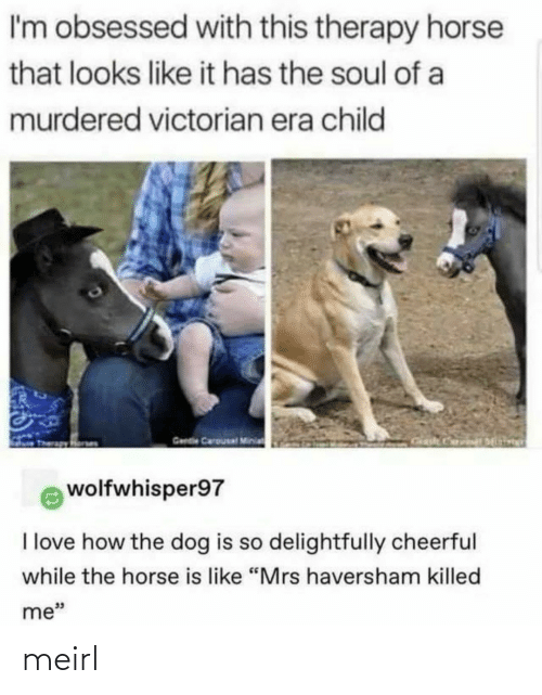 """Love, Horse, and Victorian Era: I'm obsessed with this therapy horse  that looks like it has the soul of a  murdered victorian era child  Gende Carousal Minia  wolfwhisper97  I love how the dog is so delightfully cheerful  while the horse is like """"Mrs haversham killed  me"""" meirl"""