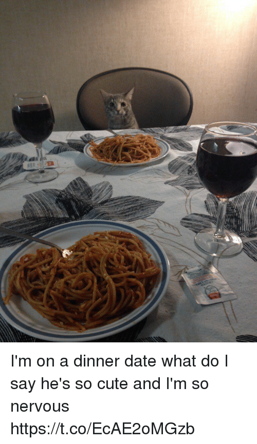 Cute, Date, and Girl Memes: I'm on a dinner date what do I say he's so cute and I'm so nervous https://t.co/EcAE2oMGzb