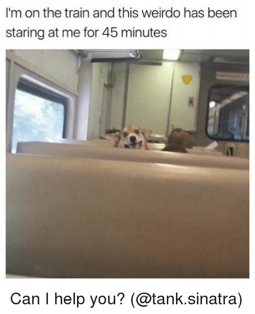 Memes, Help, and Train: I'm on the train and this weirdo has been  staring at me for 45 minutes Can I help you? (@tank.sinatra)