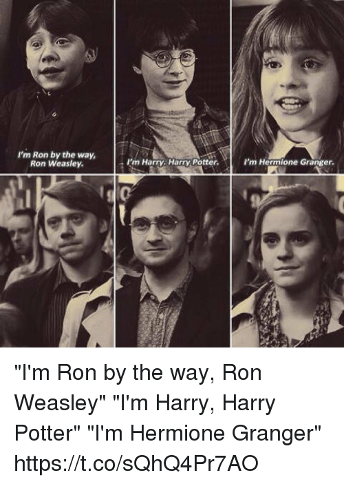 Ron weasley hermione granger sex stories