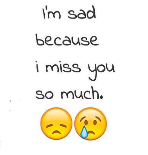 Im Sad Because I Miss You So Much Meme On Meme