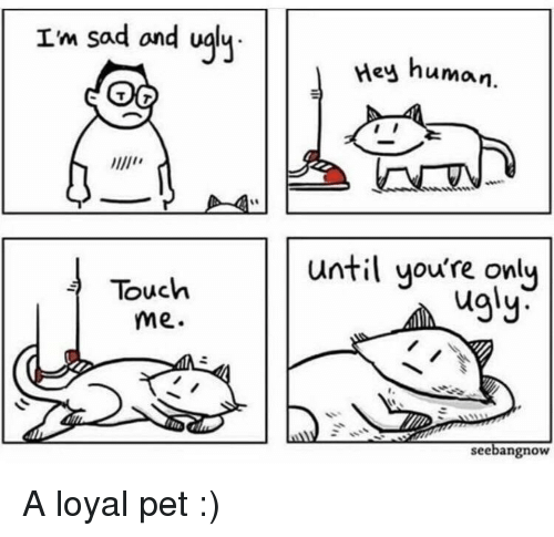 Ugly, Sad, and Human: Im sad ond ualy  Hey  human.  until you're only  Touch  me.  ugly  r.  seebangnow A loyal pet :)