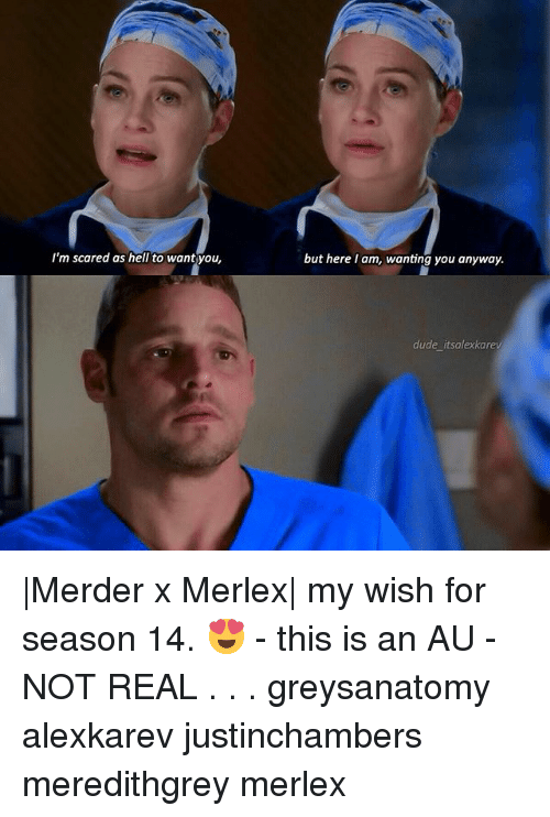 Dude, Memes, and Hell: I'm scared as hell to wantyou,  but here I am, wanting you anyway.  dude itsalexkarev |Merder x Merlex| my wish for season 14. 😍 - this is an AU - NOT REAL . . . greysanatomy alexkarev justinchambers meredithgrey merlex