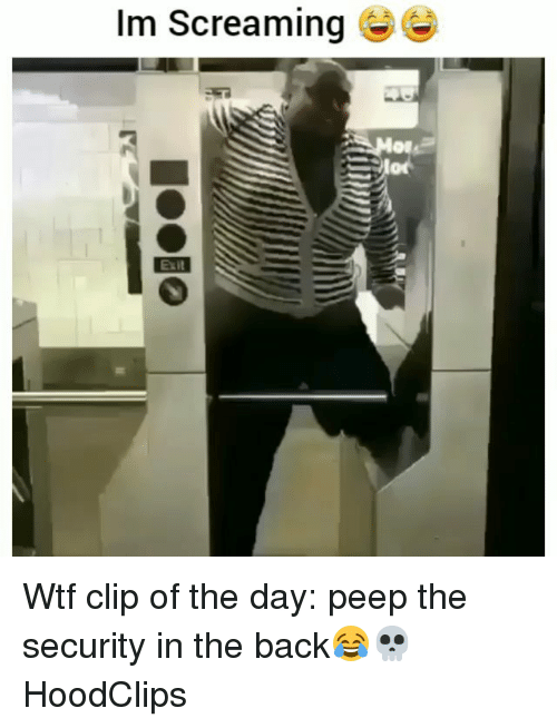 Funny, Wtf, and Back: Im Screaming  or  Exit Wtf clip of the day: peep the security in the back😂💀 HoodClips