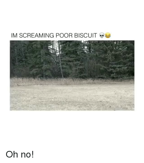 Oh No, Screaming, and Poor: IM SCREAMING POOR BISCUIT Oh no!