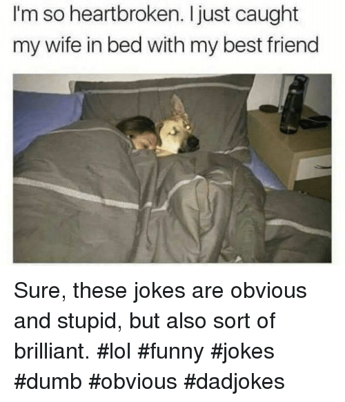 Best Friend, Dumb, and Funny: I'm so heartbroken. Ijust caught  my wife in bed with my best friend Sure, these jokes are obvious and stupid, but also sort of brilliant. #lol #funny #jokes #dumb #obvious #dadjokes