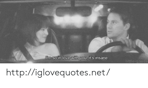 Love, Http, and Net: Im so in love with you, its insane http://iglovequotes.net/