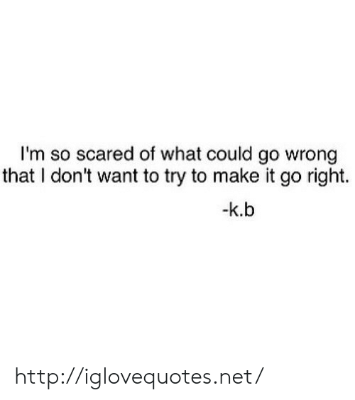 Http, Net, and Make: I'm so scared of what could go wrong  that I don't want to try to make it go right.  -k.b http://iglovequotes.net/