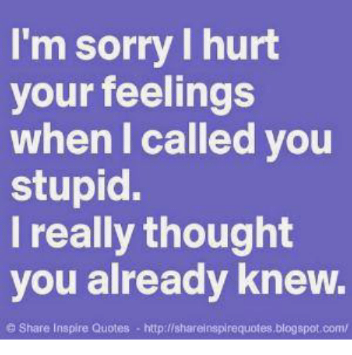 Im Sorry Hurt Your Feelings When I Called You Stupid I Really