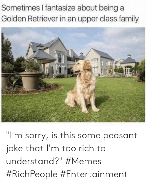 """Memes, Sorry, and Peasant: """"I'm sorry, is this some peasant joke that I'm too rich to understand?"""" #Memes #RichPeople #Entertainment"""