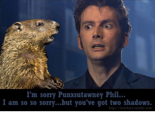 sorry http and got im sorry punxsutawney phil i am