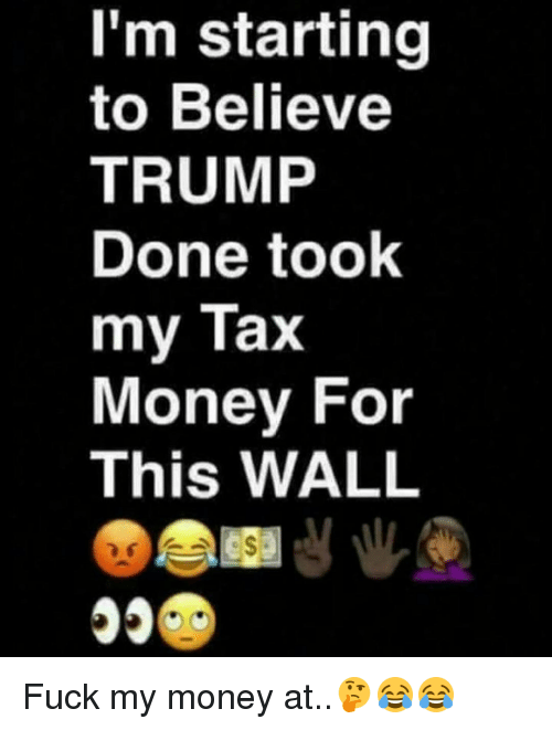 Memes, 🤖, and Tax: I'm starting  to Believe  TRUMP  Done took  my Tax  Money For  This WALL Fuck my money at..🤔😂😂