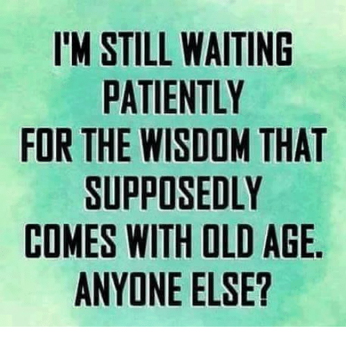 im still waiting patiently for the wisdom that supposedly comes 14346075 ✅ 25 best memes about waiting patiently waiting patiently memes
