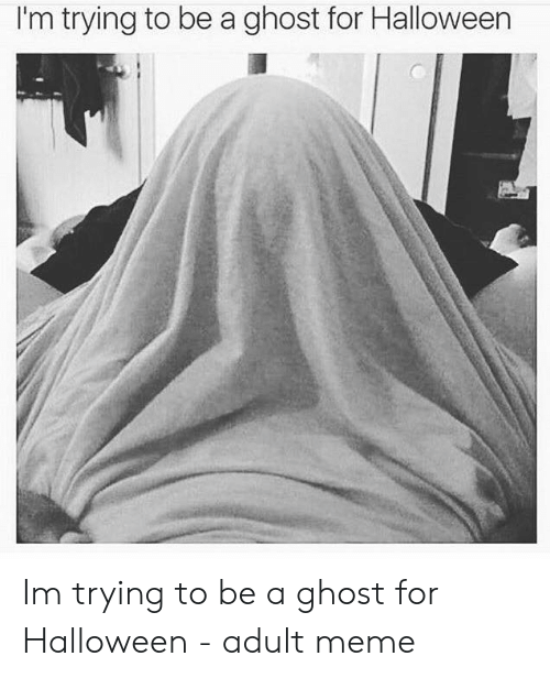 Halloween, Meme, and Ghost: I'm trying to be a ghost for Halloween Im trying to be a ghost for Halloween - adult meme