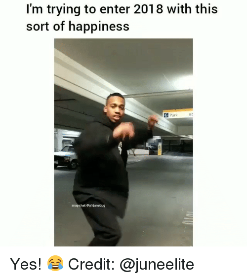 Memes, Snapchat, and Happiness: I'm trying to enter 2018 with this  sort of happiness  Park  ES  snapchat 0airjunebug Yes! 😂 Credit: @juneelite