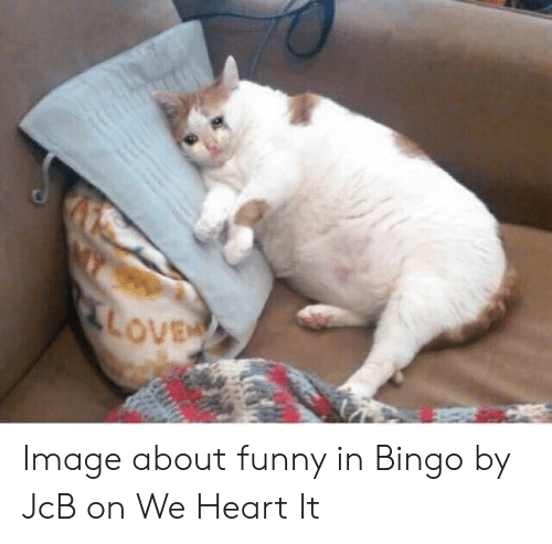 Image About Funny In Bingo By Jcb On We Heart It Funny Meme On Sizzle