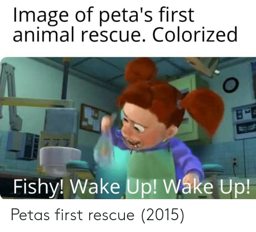 Peta, Animal, and Image: Image of peta's first  animal rescue. Colorized  Fishy! Wake Up! Wáke Up Petas first rescue (2015)