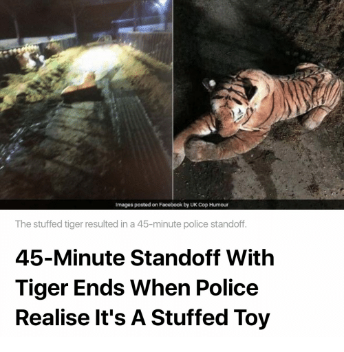 Facebook, Police, and Images: Images posted on Facebook by UK Cop Humour  The stuffed tiger resulted in a 45-minute police standoff  45-Minute Standoff With  Tiger Ends When Police  Realise lt's A Stuffed Toy