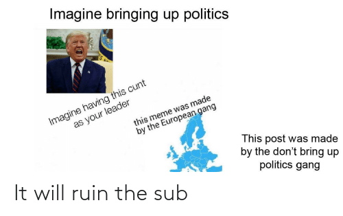 Meme, Politics, and Gang: Imagine bringing up politics  Imagine having this cunt  as your leader  this meme was made  by the European gang  This post was made  by the don't bring up  politics gang It will ruin the sub